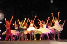 Festival de Dança de Teresopolis / Foto: Divulgação
