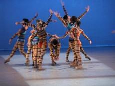 """Espetáculo """"Magnificat"""", coreografado por Luis Arrieta. Foto: Sílvia Machado."""